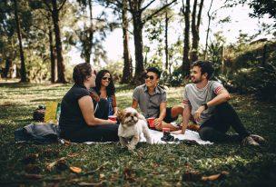 picnicpicnic